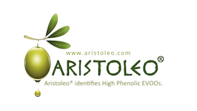 Aristoleo logo card